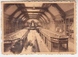 Maison De Melle, Lez Gand, La Musée De Commerce (pk23203) - Melle