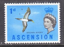 ASCENSION  75   **   BIRD - Ascension
