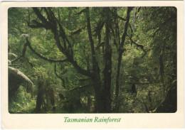 AUSTRALIA - 1997 - Tasmanian Rainforest - Airmail - Fun Run- Viaggiata Da Hobart Per Yutz, France - Australia