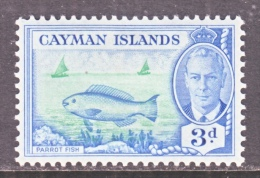 CAYMAN ISLANDS   128  *   PARROT FISH - Cayman Islands