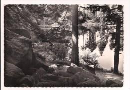 - 88 - VEXAINCOURT: Le Donon - Le Lac De La Maix - Hôtel Velleda - Cpsm La Cigogne, Collection Velleda - - Autres Communes