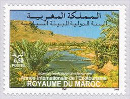 Morocco 2002 Wadi Draa Landscape River Valley MNH ** - Maroc (1956-...)