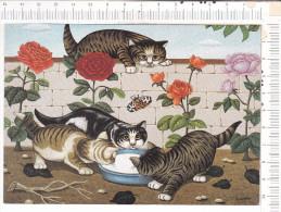 CHATS   à   L   Ecuelle  De   Lait   -   André   DURANTON  -   Galerie  Naïv'Art -  1987 - Katten
