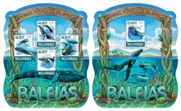 MOZAMBIQUE 2015 - Whales, Shells M/S + S/S. Official Issue - Schelpen