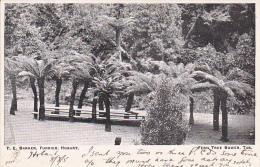 Australia Tasmania 1905 Used Postcard Hobart - Postcards