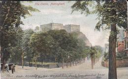 Natal 1905 Used Postcard - Postcards
