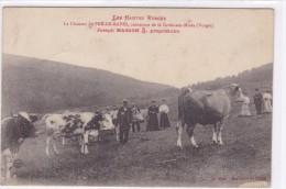 Les Hauts Vosges La Chaume Du Pré-de-raves Commune De La Croix Aux Mines - France