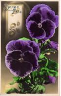 C.P.A -  BONNE FÊTE - ABC 2364 - Pensée Violettes - Fêtes - Voeux