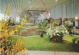 Berlin, Grüne Woche 1971 - Ohne Zuordnung