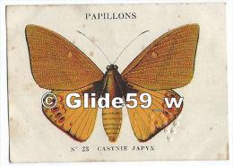 Image Chocolat CASINO - Série Papillons - N° 23 - Castnie Japyx - Autres