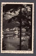 1941 MOLVENO AL LAGO PANORAMA FP V SEE 2 SCANS CARTOLINA  FOTOGRAFIA AUROSMALTO - Altre Città