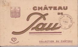 CARNET  DE  20  CPA  DE  CHÂTEAU  DE  PAU - Cartes Postales