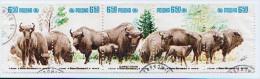 BANDE DE 5 TIMBRES - POLOGNE - 2000 - BISONS - OBLITERES - Used Stamps