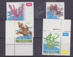 Transkei 1988 Seaweed 4v ** Mnh (24914) - Transkei