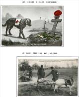 Lot Croix Rouge N 57 - Militaria
