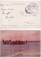 1913 Libye Libya Libia Cartolina Ill. Codognato Vg ZANZUR X Benevento Cenno Piega Cp Card - Libia