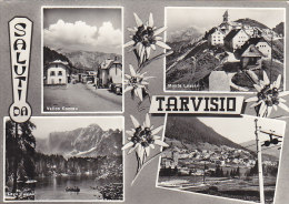 Italie - Tarvisio - Saluti Da Tarvisio - Udine