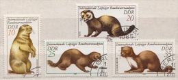 Germany / DDR Used Stamps - Knaagdieren