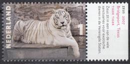 Nederland -  Charlotte Dumas - Zeus, 2007 - Tijger/Tiger - MNH - NVPH 3334 - Period 2013-... (Willem-Alexander)