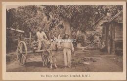 Trinidad  Coco Nut Vendor RP    T107 - Trinidad