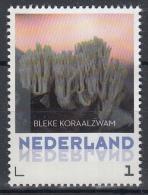Nederland - 8 September 2015 - Paddestoelen/Pfilzen/Mushrooms - Bleke Koraalzwam - MNH - Personalisierte Briefmarken