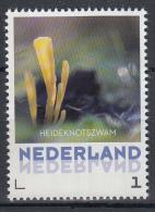 Nederland - 8 September 2015 - Paddestoelen/Pfilzen/Mushrooms - Heideknotzwam - MNH - Personalisierte Briefmarken