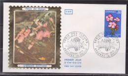 = Flore, Fleurs Des Champs Des Vallées, L'Œillet Sauvage, Andorre La Vieille 7.7.73 Enveloppe 1er Jour Timbre N°231 - FDC
