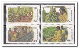 Venda 1980, Postfris MNH, Banana Industry - Venda
