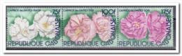 Gabon 1982, Postfris MNH, Flowers - Gabon (1960-...)