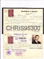 AUTORISATION DE CIRCULER - PRAHA - ROMILLY SUR AUBE 10 - CESKOSLOVENSK - PRAGUE - REPUBLIQUE TCHEQUE - Collections