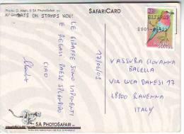 """Sud Africa  Francobollo """" FUccello Val R2"""" Su Cartolina  Animale Giraffa - Afrique Du Sud (1961-...)"""