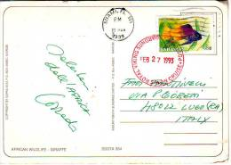 "Bahamas Francobollo"" Pesce  Val 15c ""annullo Nave Cruise Posted Su Cartolina Animale - Bahamas (1973-...)"
