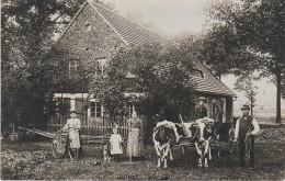 Foto AK Rabishau Stempel Rebiszow Haus Familie Baumert ? Bei Friedeberg Queis Mirsk Flinsberg Greiffenberg Langwasser - Schlesien