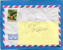 MARCOPHILIE-lettre-POLYNESIE FSE- Pour Françe -cad- PAPARA 1991-  Stamps-N°372-non Dentelé Ananas - Lettres & Documents