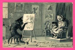 Anthropomorphisme - Singe Et Chats - La Séance De Portrait - Poezen - 1903 - Relief - De Torino - KOPAL - Monos