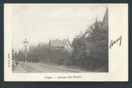 Liège - Cointe.  Avenue Des Ormes. Villas En 1902.    D.V.D.  8385 - Liege