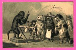 Anthropomorphisme - Singe Expliquant Aux Chats Ou Donnant Une Leçon - Poezen - 1905 - Carte Avec Paillettes - KOPAL - Monos