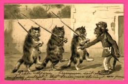 Anthropomorphisme - Singe Militaire Donnant Des Ordres Aux Chats Avec Baillonettes - Poezen - 1905 - KOPAL - Monos