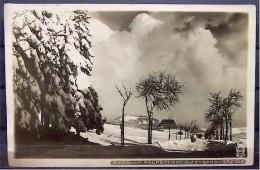 """Alte Karte """"ALTENBERG Erzgebirge - Berghof Raupennest""""  1927 - Altenberg"""