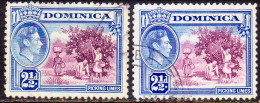 Dominica 1938-42 SG #103, 103a Both Shades Used - Dominica (...-1978)