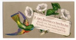 RARE Chromo Victorian Christmas Card Carte Voeux Oiseau En Vol Colibri Bouquet Fleur Hypomée Liseron Ramage Plume Bec - Chromos