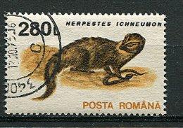 (cl. 5 - P.11) Roumanie Ob N° 4103 (ref. Michel Au Dos)  - La Mangouste - 1948-.... Repúblicas