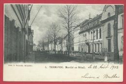 Dendermonde / Termonde - Marché Au Bétail - 1902 ( Verso Zien ) - Dendermonde