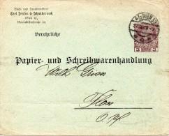 AUTRICHE ENTIER POSTAL PRIVE 1909 - Postwaardestukken