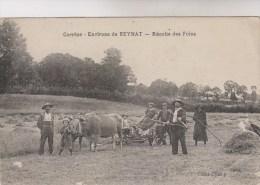 ENVIRONS DE BEYNAT    RECOLTE   DES FOINS - Francia
