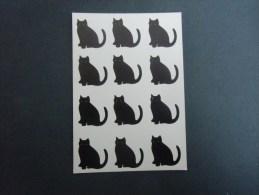 Chats Noir - Cats