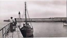 Cpsm   Ile D Oleron La Cotiniere Au Port L Appareillage - Ile D'Oléron