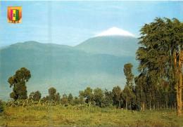 VOLCAN KARISIMBI - Rwanda
