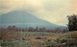 VOLCAN  MUHABURA - Rwanda