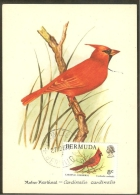 BERMUDES Carte Maximum - Cardinal Rouge - Bermudes